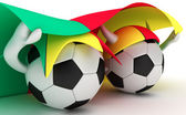 Two soccer balls hold Cameroon flag — Stock Photo
