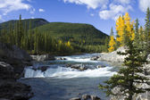 Rapids in fall — Stock Photo