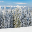 Royalty-Free Stock Photo: Winter mountain landscape (panorama)