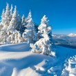 Winter mountain panorama landscape — Stock Photo