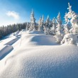 Winter mountain landscape — Stock Photo #4467072