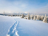 Winter berglandschap — Stockfoto