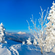 Winter mountain panorama - Stock Photo