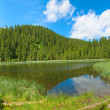 Summer mountain lake — Stock Photo