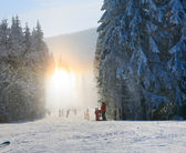 Snow dust dazzle shining on winter skiing slope — Stock fotografie