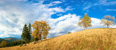 Autumn in mountain — Stockfoto