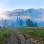 Summer mountain panorama. — Stock Photo