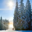Stock Photo: Snow dust dazzle shining on winter skiing slope