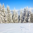 Misty winter mountain landscape — Stock Photo #4503180