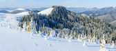Winter mountain landscape (panorama) — Stockfoto