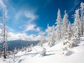 雪域景观 — 图库照片