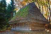 Old wooden house with thatched roof — Foto Stock
