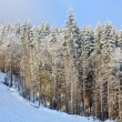 Misty winter mountain landscape — Stock Photo
