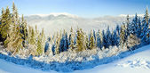 Winter mountain landscape (panorama) — Stock fotografie