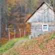 Small house on autumn mountains — Stock Photo #4533441