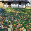 Country wooden hut and autumn garden grass near — Stock Photo