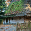 Old wooden house with thatched roof - Stock Photo