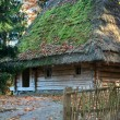 Old wooden house with thatched roof - Zdjęcie stockowe