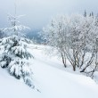 Winter country mountain landscape — Stock Photo