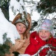 Stock Photo: Children in winter park