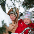 Children in winter park — Stock Photo #4537920