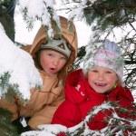 Children in winter park — Stock Photo #4537926