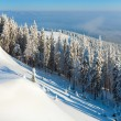 Stock Photo: Snowdrifts winter panoramlandscape