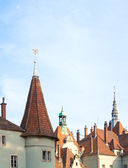 Roof of Hunting Lodge (palace) of Shenborn — Stock Photo