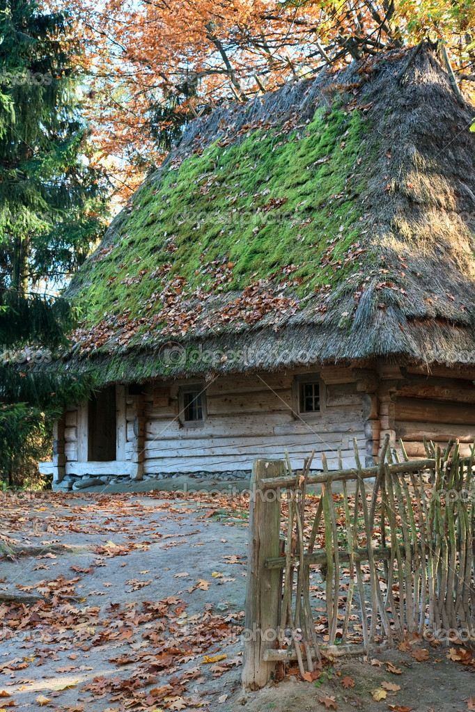 Ukrainian historical country wooden hut with thatched moss overgrown roof — Stock Photo #4533693