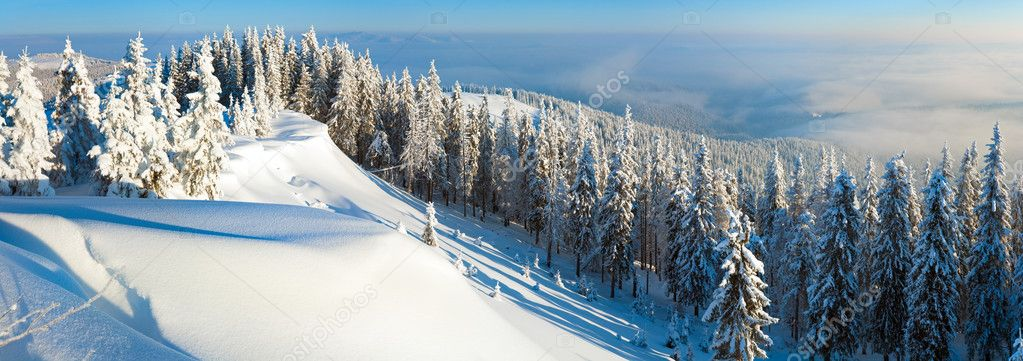 Winter rime and snow covered hill top with fir trees and  snowdrifts (Carpathian Mountains, Ukraine). Three shots stitch image. — Stock Photo #4538117