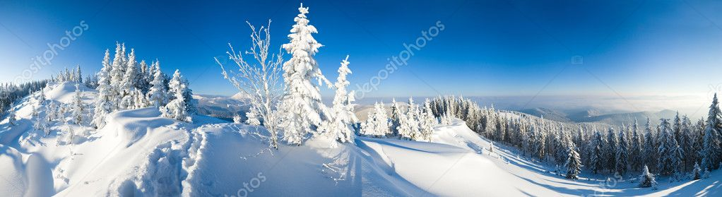 Winter calm mountain landscape (Carpathian Mountains, Ukraine). Eight shots stitch image.  Stock Photo #4538124