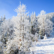 Winter mountain landscape — Stock Photo