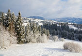 Winter mountain landscape — Стоковое фото