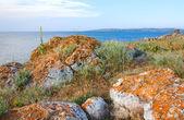 Rocky summer coastline — Stock Photo