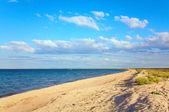 Summer sea sandy coastline — Stock Photo