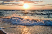 Sea sunset surf wave — Stock Photo
