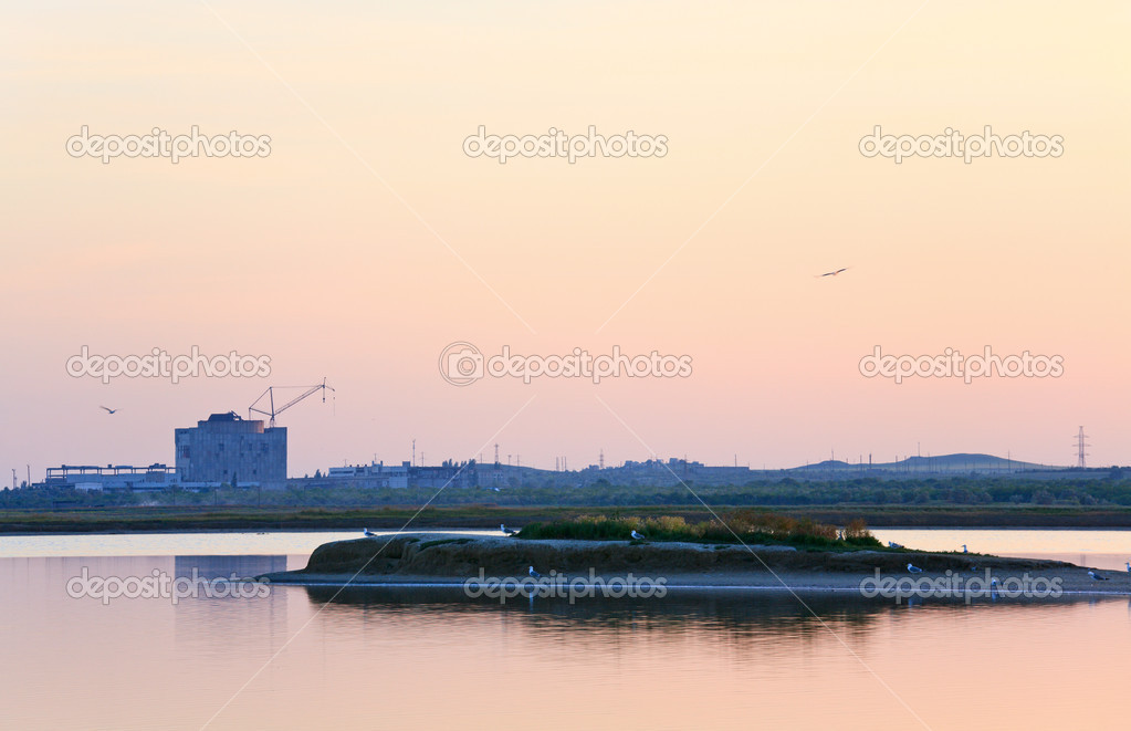 Unfinished desertion  energetic block of atomic power plant and  gull flock (near Scholkino Town, Crimea, Ukraine). — Stock Photo #4564953