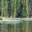 Summer mountain forest lake — Stock Photo #4577850