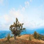 Morning autumn mountain panorama — Stock Photo #4578284