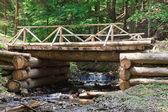 Ponte de madeira através de fluxo na floresta — Foto Stock