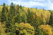 Otoño vista a la montaña cerro — Foto de Stock