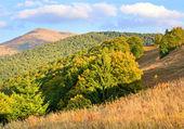 Podzim v horských — Stock fotografie