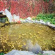 Small pond in autumn city park — Stock Photo