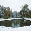 Stock Photo: Autumn park pond and first snow
