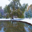 Stock Photo: Park and first snow