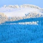 Morning autumn mountain panorama — Stock Photo