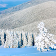 Winter mountain landscape — Stock Photo #4584373