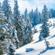 Winter mountain landscape — Stock Photo #4584423