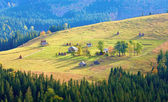 Autumn mountain village — Stock Photo
