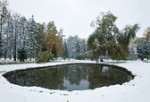 Autumn park pond and first snow — Stock Photo